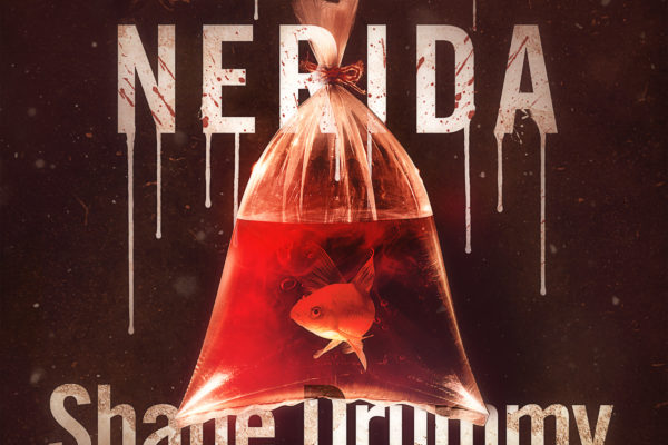 Never-Nerida-Audiobook